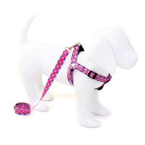 Conjunto Peitoral e Guia para Cachorro Bolas Pink