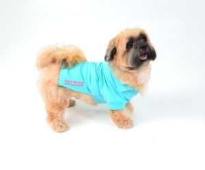 Camisa Polo para Cachorro Pet Style Azul Piscina