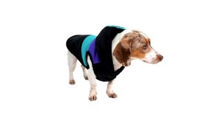 Jaqueta para Cachorros Social Club
