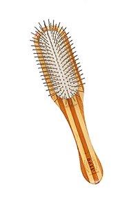 Escova Retangular de Bambu Bass com Pinos - Listrado