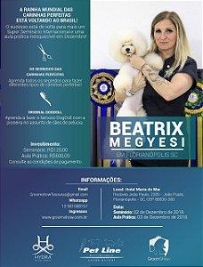 Seminário e Aula Prática com Beatrix Megyesi em FLORIANÓPOLIS/SC - dias 2 e 3 de Dezembro