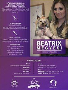 Aula Prática Beatrix Megyesi CURITIBA 26 de Novembro