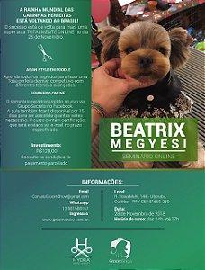 Seminário Online Beatrix Megyesi Dia 28 de Novembro