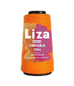 LIZA GROSSA - COR 4650