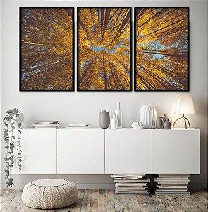 Conjunto com 03 quadros decorativos Floresta