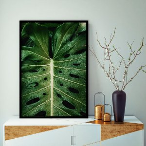 Quadro decorativo Botanic
