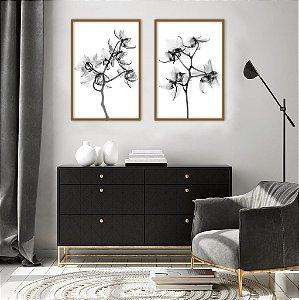 Conjunto com 02 quadros decorativos Orquídeas P&B