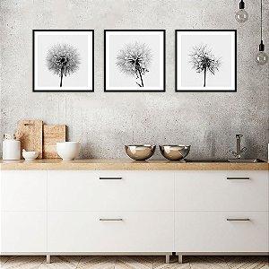 Conjunto com 03 quadros decorativos Dente-de-leão 40x40cm (LxA) Moldura Preta