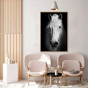 Quadro decorativo Cavalo Branco