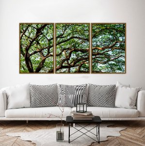 Conjunto com 03 quadros decorativos Árvore 40x60cm (LxA) Moldura Preta