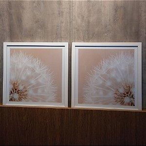 ENVIO IMEDIATO - Conjunto com 02 quadros decorativos Dente-de-leão 40x40cm (LxA) Moldura cor Branco