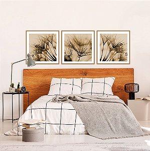 Conjunto com 03 quadros decorativos Dente-de-leão