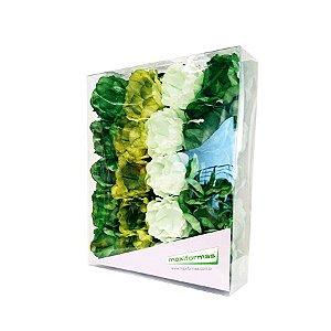 Forminha para Doces Finos - La Belle Mista 3 Tons Verde - 40 unidades - MaxiFormas Rizzo