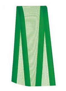 Fita Voal com Cetim Progresso 22mm nº5 - 10m Cor 217 Verde Bandeira - 01 unidade