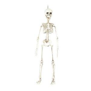 Enfeite Decorativo Halloween - Esqueleto Caveira - 48cm - 01 unidade - Cromus - Rizzo Confeitaria