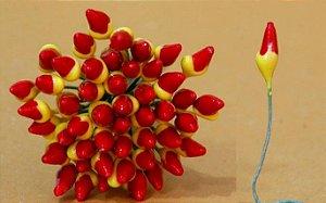 Pistilo Bico de Papagaio com 50 un. Primor Rizzo Confeitaria