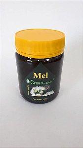 Mel Puro Laranjeira 500g – GreenPrópolis Rizzo Confeitaria