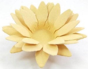 Forminha para Doces Floral Lee Colorset Palha - 40 unidades - Decorart