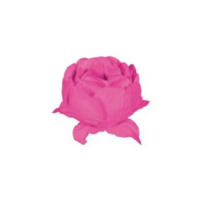 Forminha para Doces Finos - Bela Neon Rosa - 20 unidades - Decora Doces - Rizzo
