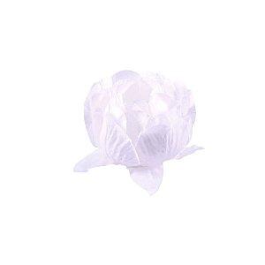 Forminha para Doces Finos - Bela Branco/Branco 40 unidades - Decora Doces - Rizzo
