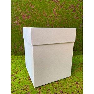 Caixa Rígida  Azul Bebê - Tamanho G - 16x16x20 - 01 unidade - Rizzo
