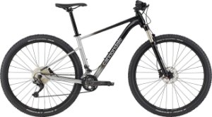 Cannondale Trail SL 4 29 22V Cinza 2021
