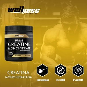 CREATINE - 300G - WELLNESS NUTRITION