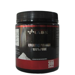 CREATINA ( 300G) ENDURANCE LABS