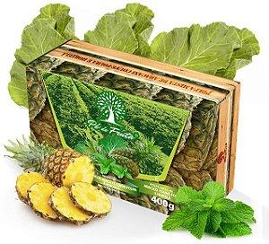 PÉ DE FRUTA - Polpa de abacaxi, hortelã e couve (400g)