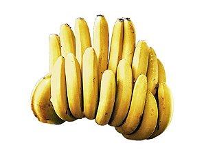Banana Pacovan (kg / aprox. 8 unidades)