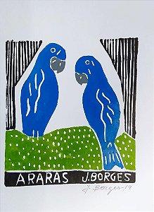 Xilogravura J. Borges Arara  P- PE