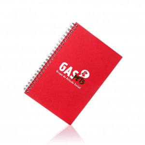 Caderno GAS Pets Personalizado 100 Folhas Pautadas
