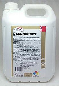 Limpador Pós-Obra Remove Cimento e Argamassa Desencrost 1:20 5L