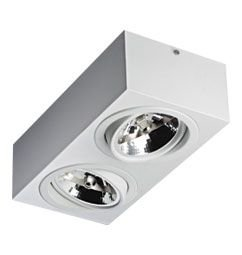 Luminária de Sobrepor Orientável 2xAR111 17x34x10cm