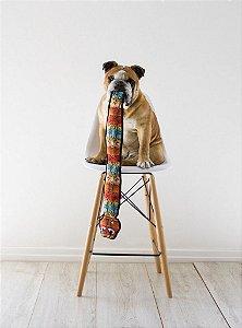 Brinquedo Ultrarresistente para Cães Cascavel Colorida GG