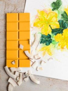 Barra de Chocolate de Abóbora com Coco 35% Cacau - Priscila França Chocolates