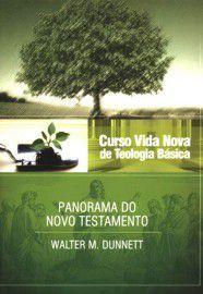 Curso Vida Nova de Teologia Básica - Vol. 3 - Panorama do Novo Testamento / Walter M. Dunnet