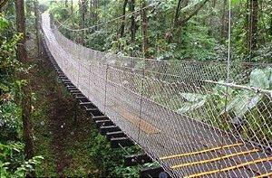 Rede para Pontes Travessias (Parques, Árvores, Sitios...)