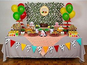 Festa Fazendinha - Aluguel de Decoração