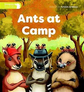 Ants At Camp