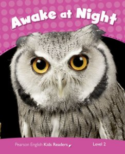 Awake At Night - Level 2