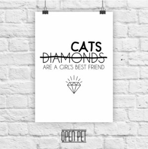 Poster Cat Diamonds