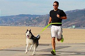 Guia para Corrida Com Cães Dog Running
