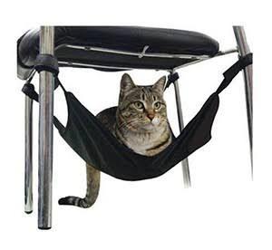 Rede para Gato