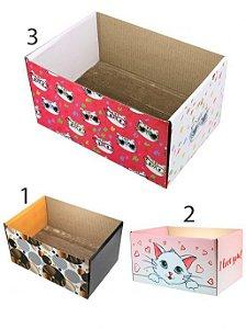 Arranhador Papelão Caixa com Catnip