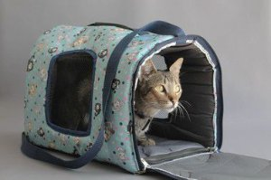 Bolsa Transporte Estampada Impermeável Gatos D2K