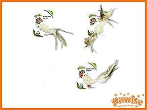 Brinquedo Nature Catnip Pawise