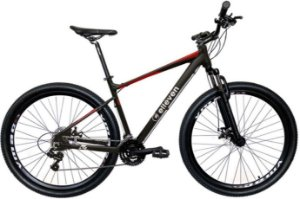 Bicicleta Elleven Gravity Mecânica 24v