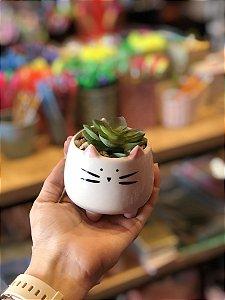 Vaso Cerâmica Decorativo Gatinho com Suculenta