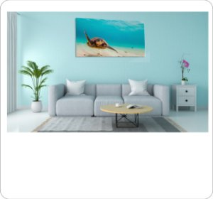 Quadro Decorativo Canvas Tartaruga 2